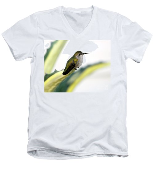 Calliope Hummingbird On Agave Men's V-Neck T-Shirt