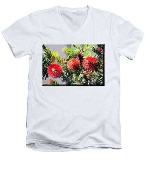 Callistemon - Bottle Brush T-shirt 6 Men's V-Neck T-Shirt by Isam Awad