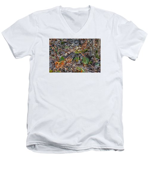 Camouflaged Plumage With Fallen Leaves Men's V-Neck T-Shirt by Asbed Iskedjian