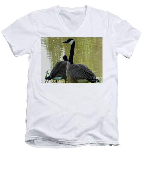 Men's V-Neck T-Shirt featuring the photograph Canada Goose Edge Of Pond by Rockin Docks Deluxephotos