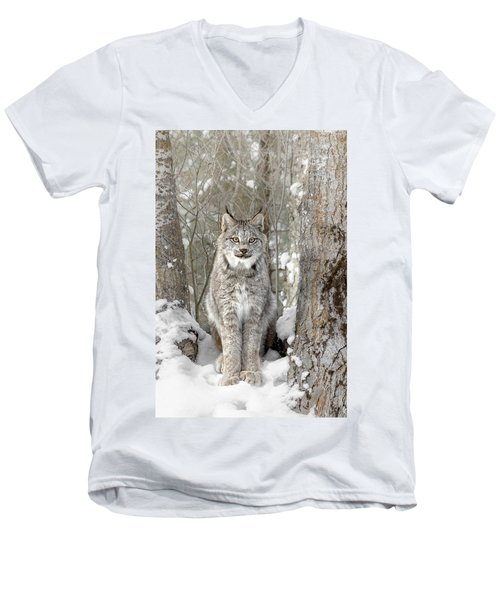 Canadian Wilderness Lynx Men's V-Neck T-Shirt by Wes and Dotty Weber