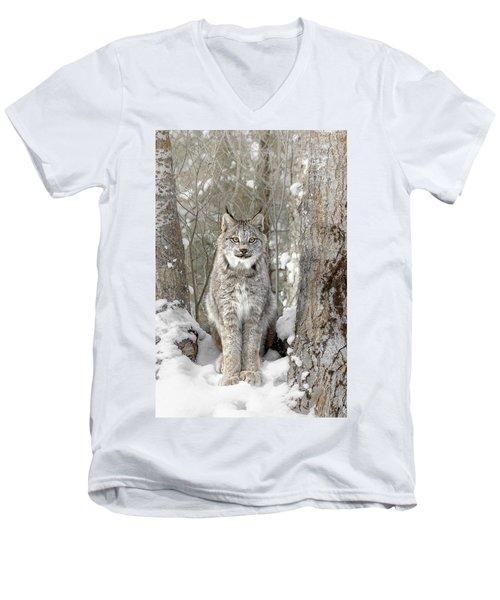 Canadian Wilderness Lynx Men's V-Neck T-Shirt