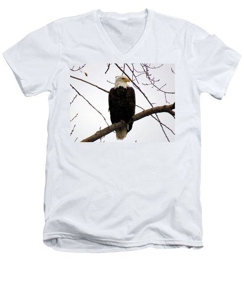 Cape Eagle Men's V-Neck T-Shirt