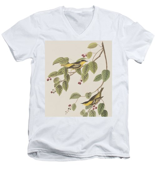 Carbonated Warbler Men's V-Neck T-Shirt