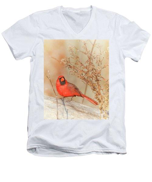 Cardinal In Fall  Men's V-Neck T-Shirt