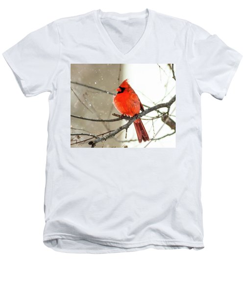 Cardinal In The Snow Men's V-Neck T-Shirt by Ursula Lawrence
