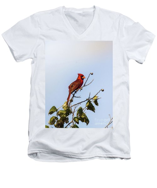 Men's V-Neck T-Shirt featuring the photograph Cardinal On Treetop by Robert Frederick