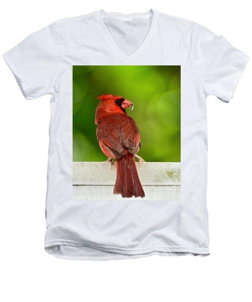 Cardinal Red Men's V-Neck T-Shirt