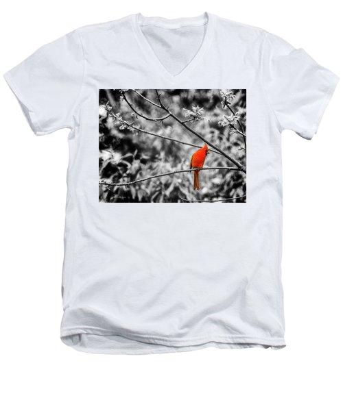 Cardinal... Men's V-Neck T-Shirt
