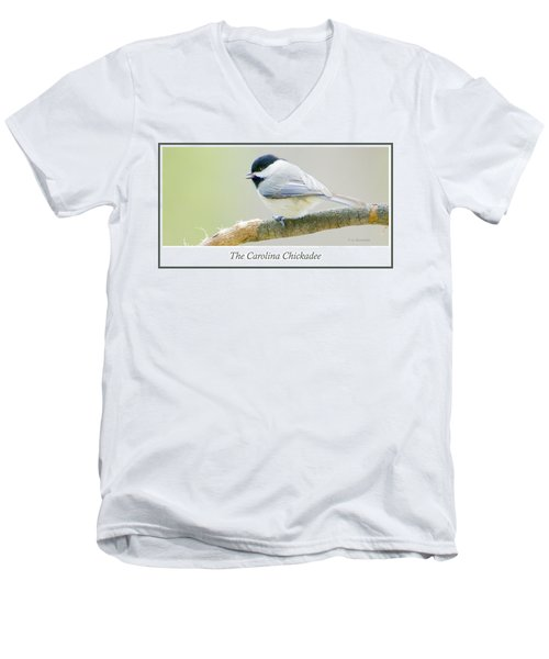 Carolina Chickadee, Animal Portrait Men's V-Neck T-Shirt by A Gurmankin