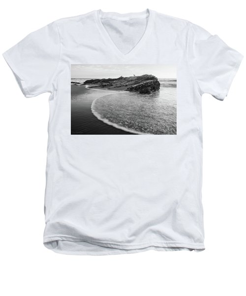Carpinteria Seagull Men's V-Neck T-Shirt
