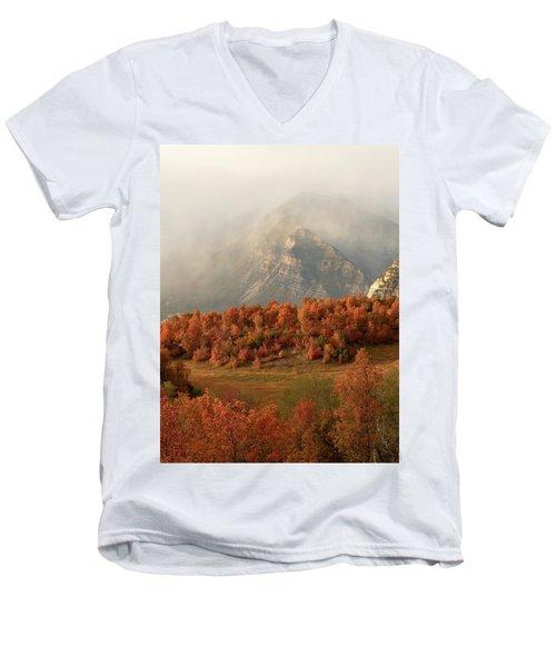 Cascading Fall Men's V-Neck T-Shirt