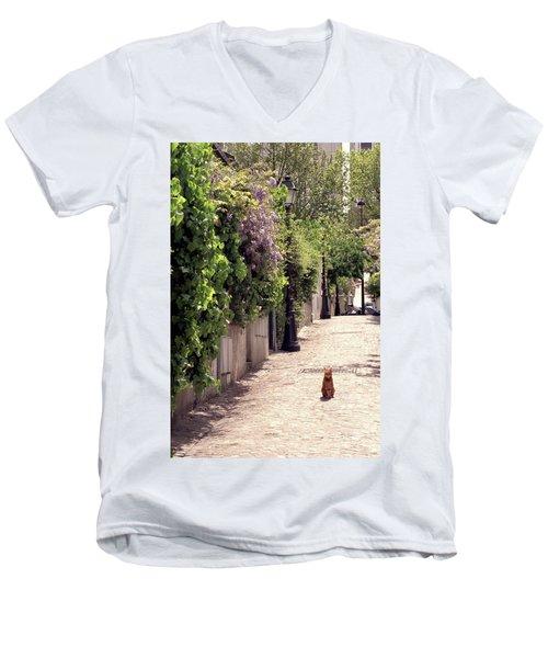 Cat On Cobblestone Men's V-Neck T-Shirt