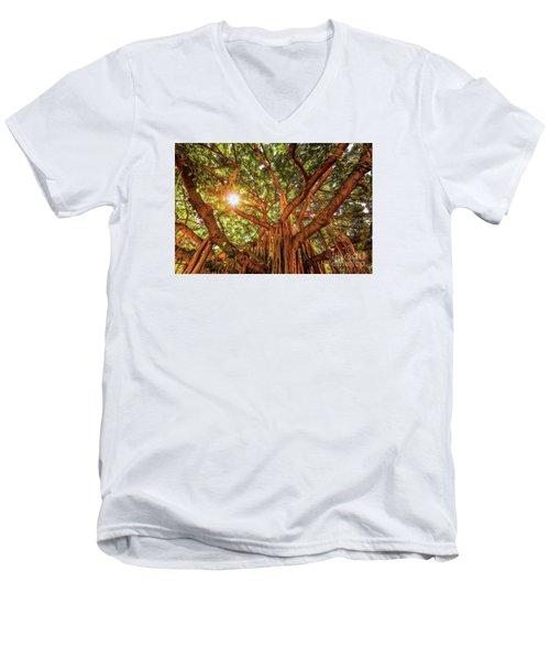 Catch A Sunbeam Under The Banyan Tree Men's V-Neck T-Shirt