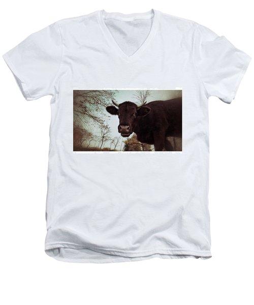#cattle #kuh #rind #weide #herbst Men's V-Neck T-Shirt