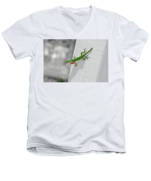 Chameleon Men's V-Neck T-Shirt by Robert Meanor