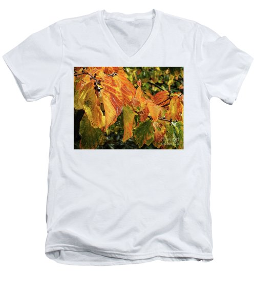 Men's V-Neck T-Shirt featuring the photograph Changes by Peggy Hughes
