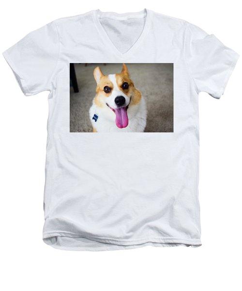 Charlie The Corgi Men's V-Neck T-Shirt