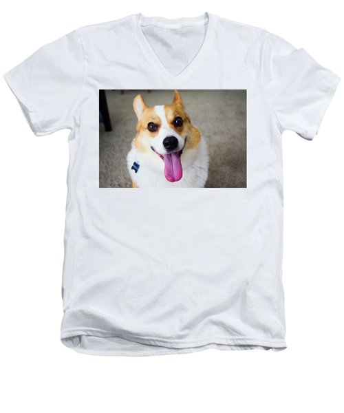 Charlie The Corgi Men's V-Neck T-Shirt
