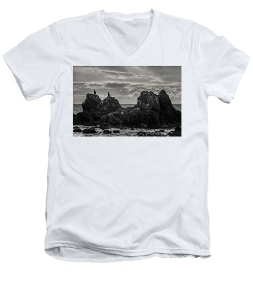 Chatting On Rocks Men's V-Neck T-Shirt