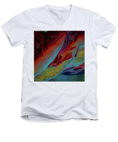 Cherish Men's V-Neck T-Shirt