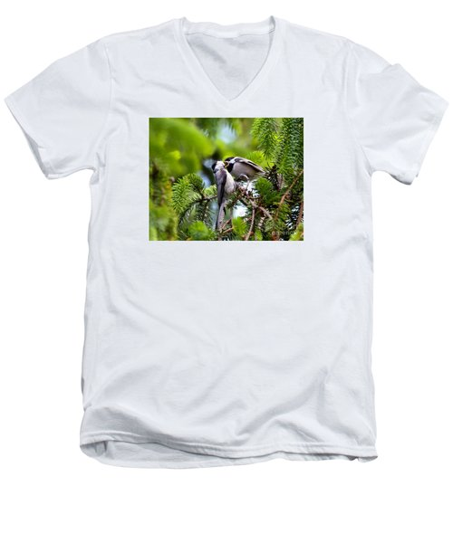 Chickadee Feeding Time Men's V-Neck T-Shirt by Kerri Farley