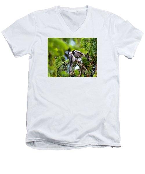 Chickadee Feeding Time Men's V-Neck T-Shirt