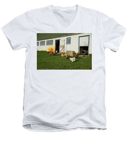 Chickens By The Barn Men's V-Neck T-Shirt by Steven Clipperton