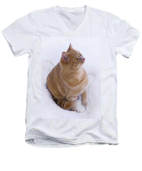 Christmas Cat Men's V-Neck T-Shirt by Jacqi Elmslie