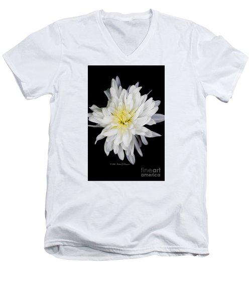 Chrysanthemum Bloom Men's V-Neck T-Shirt