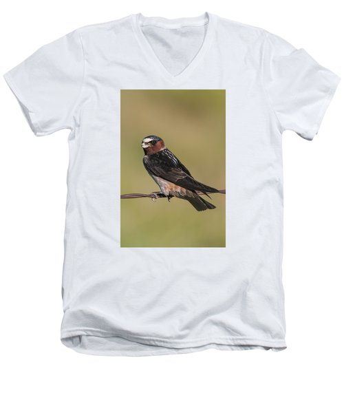 Men's V-Neck T-Shirt featuring the photograph Cliff Swallow by Gary Lengyel