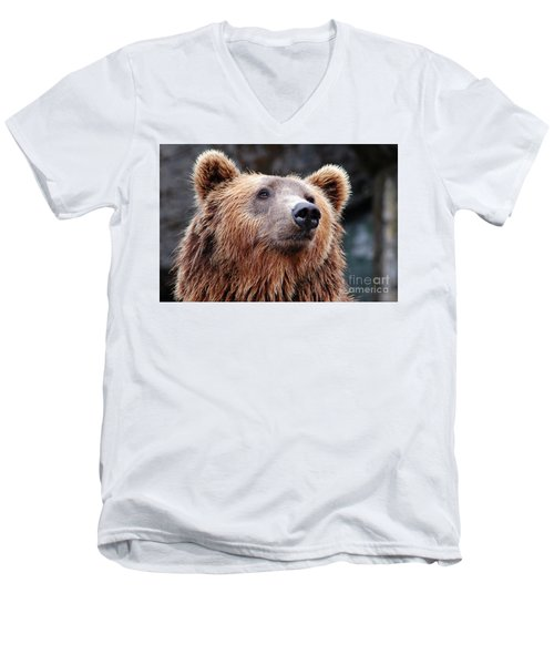 Men's V-Neck T-Shirt featuring the photograph Close Up Bear by MGL Meiklejohn Graphics Licensing