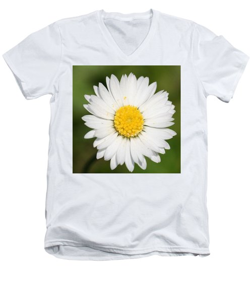Closeup Of A Beautiful Yellow And White Daisy Flower Men's V-Neck T-Shirt