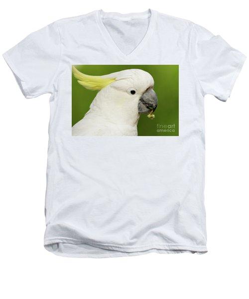 Cockatoo Close Up Men's V-Neck T-Shirt