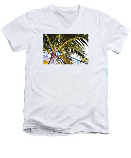 Coconut Cover Men's V-Neck T-Shirt by JAMART Photography