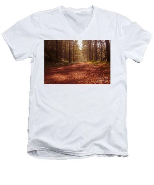Colligan Autumn 2 Men's V-Neck T-Shirt