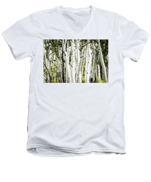 Men's V-Neck T-Shirt featuring the photograph Colorado Aspens by Dawn Romine