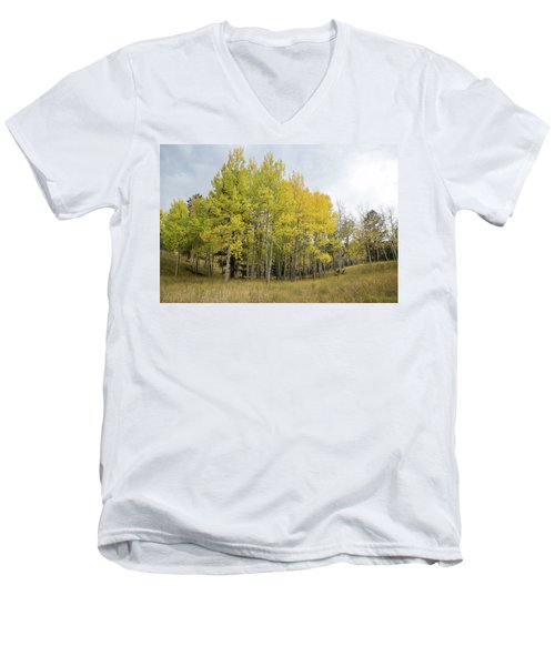 Colorado Aspens In Autumn Men's V-Neck T-Shirt