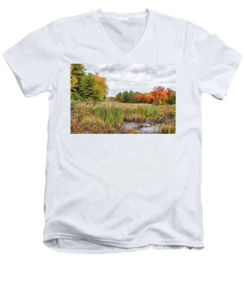 Colorful Webster Bog Men's V-Neck T-Shirt