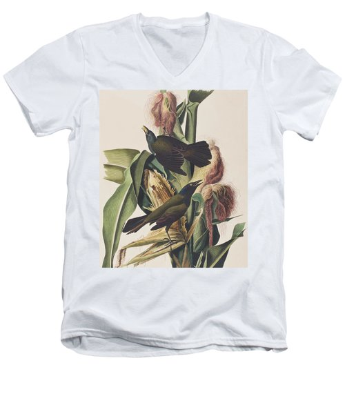Common Crow Men's V-Neck T-Shirt by John James Audubon