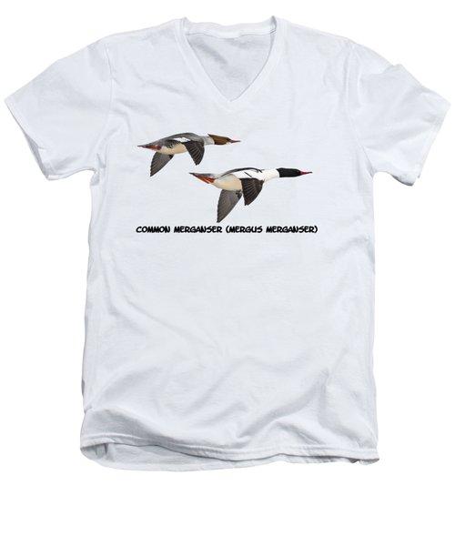 Common Mergansers  Isolated 2014-1 Men's V-Neck T-Shirt