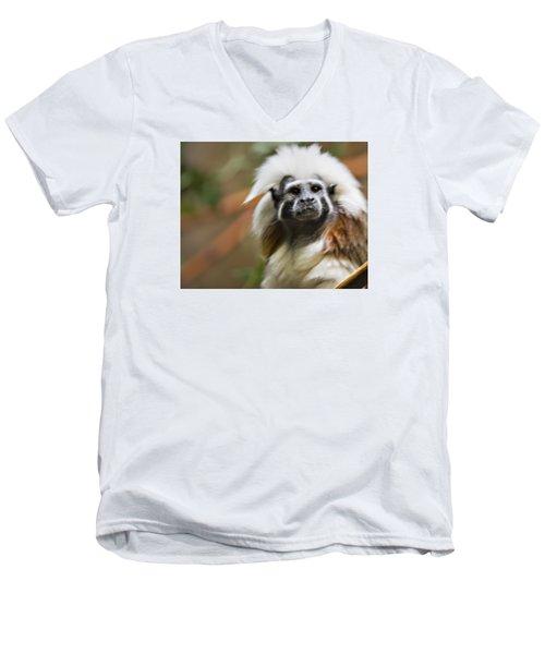 Cotton-top Tamarin _ 1a Men's V-Neck T-Shirt