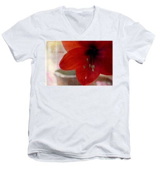 Count Your Blessings Men's V-Neck T-Shirt by Robin Dickinson