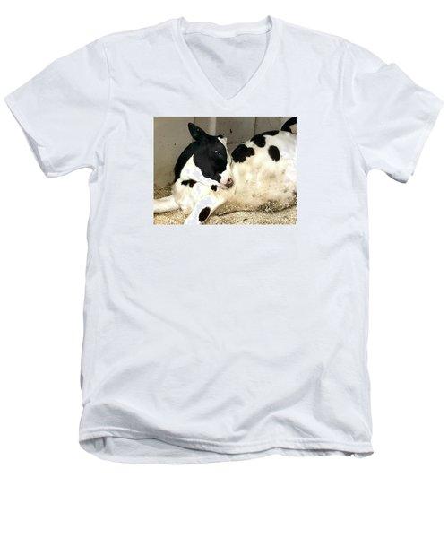 Cow Cutie Men's V-Neck T-Shirt
