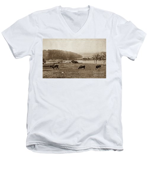 Men's V-Neck T-Shirt featuring the photograph Cows On Baker Field by Cole Thompson