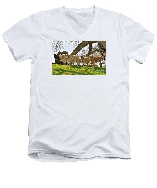 Cows Under Oak #2 Men's V-Neck T-Shirt by Amy Fearn