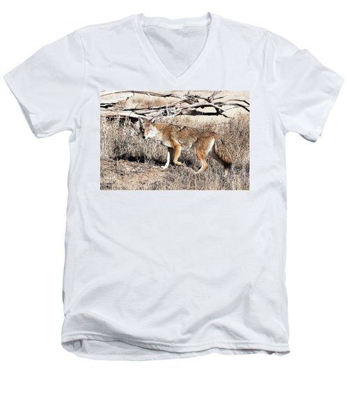 Coyote Men's V-Neck T-Shirt