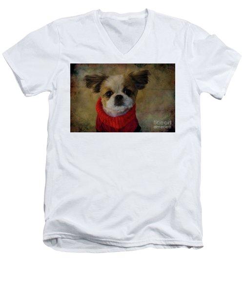 Cozy Sadie Men's V-Neck T-Shirt