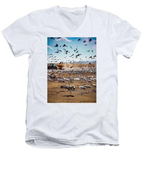 Cranes Feeding Men's V-Neck T-Shirt