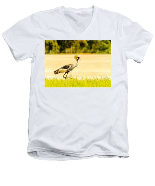 Crested Crane Men's V-Neck T-Shirt by Patrick Kain